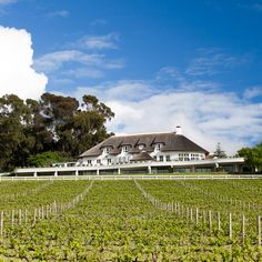 Mont Rochelle is a stunning hotel and vineyard near Cape Town in the town of Franschhoek in South Africa. Beautiful Villas, Beautiful Places, Silvester Trip, Branson Hotels, Wine Safari, Richard Branson, Luxury Holidays, Hotels And Resorts, Tips