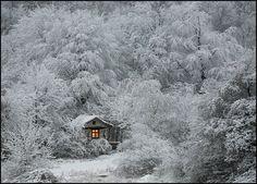 Canadian Winter Cabin