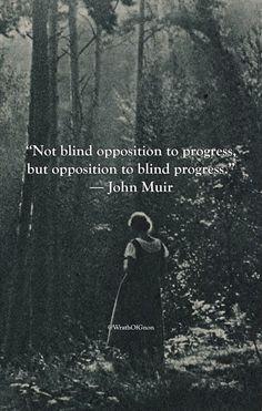 """""""Not blind opposition to progress, but opposition to blind progress.""""  ― John Muir"""