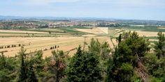 Hérault : Etang asséché de Montady depuis l'Oppidum d'Ensérune (près de Béziers)