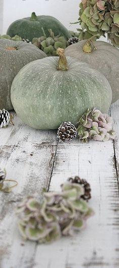 Fall Vignette with hydrangeas