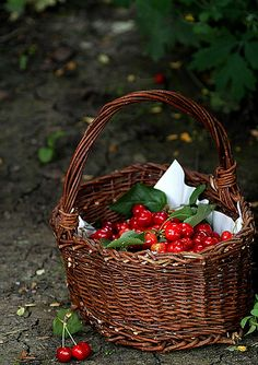 Basket of Cherries ~ Harvest Basket, French Baskets, Cherries Jubilee, Cherry Hill, Sour Cherry, Sweet Cherries, Homemade Ice Cream, Strawberry, Cottage