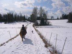 Rauhalliset maastot - ilman liikenteen melua. Käytössämme on toistakymmentä maastoreittiä. Maastoreitit tunnista kahden päivän vaelluksiin. Snow, Outdoor, Outdoors, Outdoor Games, The Great Outdoors, Eyes, Let It Snow