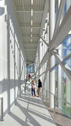 MSU Davis Harrington Welcome Center. Missouri State UniversityArchitect  MagazineHigher ...