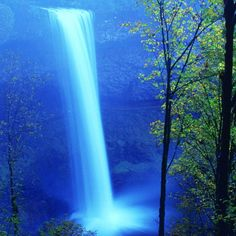 Silver Falls State Park, Oregon, America