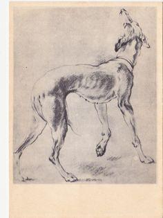 Vintage Snyders (Greyhound) Postcard - 1959, Izogiz. Etsy.com