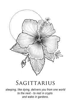Amrit Brar's Portfolio - Book X: Lovers & Losers: Sagittarius