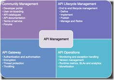 API Management Implementation 12c Book Overview by Luis Augusto Weir