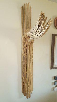 Tall Saguaro Cactus Skeleton Our Stuff