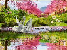 GIFS HERMOSOS: flores encoontradas en la web
