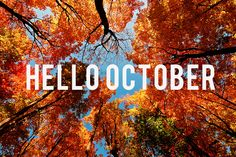 October is one of my favorite months!