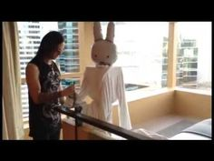 Miffy enjoys the Upper House hotel in Hong Kong, the ritziest, swankiest suite in China! More photos and a video tour at http://www.lacarmina.com/blog/2014/09/upper-house-hotel-hong-kong/  Swire Hotels, Hong Kong's most luxurious hotel! Video review of our 5 star suite. | La Carmina Blog - Alternative Fashion, Travel, Subcultures