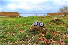 Jezioro Jamno - null