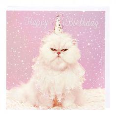 Persian cat in hat birthday card