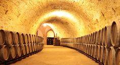 Interior of the winecellar- RealCortijo