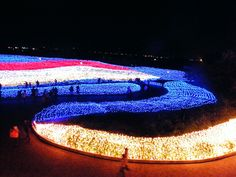 Millions of LED Lights Transform Japanese Botanical Garden Into a ...