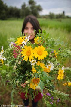 Spring bouquet in Greece Rainy Weather, Spring Bouquet, Argos, Sunny Days, Dandelion, Greece, Herbs, Flowers, Nature