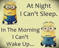 New Funny Minions Quotes 050