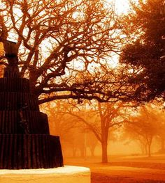 Texas A&M University - Bonfire statue