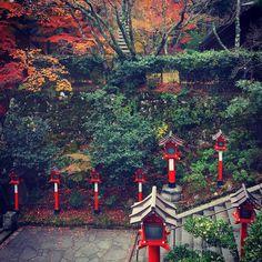 Dark and mysterious Kurama-dera (Kyoto) for you little gothlings out there. #traveljapan #traveljapan2018 #japanesetemple #kuramadera #kyoto #鞍馬寺 #京都 #mountkurama #鞍馬山 #kuramatengu #japaneselanterns #autumncolours #darkmood #visualsoflife #outdoortones #moodynaturelandscapes #visualpoetry #visualcrush #instapoetry #poetryofinstagram #calledtobecreative #madetocreate #mixedmedia #moodygram #moodygrams #inkandverses #darkmoody #творчествобезграниц #япония #курамадера Japanese Temple, Japan Travel, Kyoto, Mysterious, Exploring, Mystery, Landscape, Dark, Create