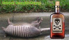 How to Kill Armadillos - Poison