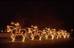 Holiday trumpeters astride their lighted horses - Holiday festival lights return to the Kentucky Horse Park Best Christmas Light Displays, Best Christmas Lights, Christmas Shows, Holiday Lights, Christmas Cave, Beautiful Christmas, Merry Christmas, Xmas, Kentucky Tourism