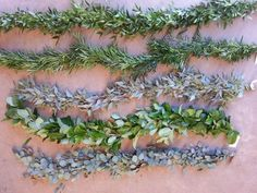 From Plumosus & Pittosporum to Seeded Eucalyptus & Salal, there's guaranteed to be a 'flavor' for EVERYONE!! These 5 are all single item garlands and they are as follows (top to bottom): Italian Ruscus, Podocarpus, Seeded Euc, Salal and Silver Dollar Euc.