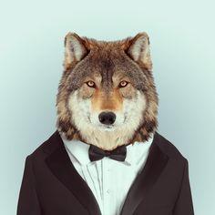 Divertidos retratos de animales vestidos de humanos - Antidepresivo