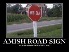 Ah, the Amish...