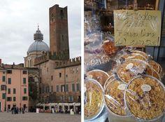 The Stroke Blog: A hidden gem in Italy: You say Mantua, I say Mantova