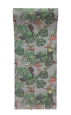 Elspeth Dally Toucan And The Bee Catcher Mist Grey Wallpaper Designed For Graduate Collection