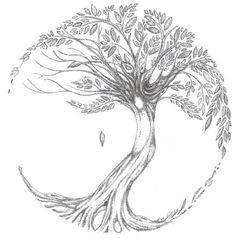 Browse all of the Tree Tattoos photos, GIFs and videos. Find just what you're looking for on Photobucket