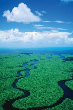 Everglades National Park, FL., is the largest subtropical wilderness in the United States.
