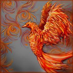 Harry+Potter+Phoenix+Bird+Tattoo | Fotos und Bilder zu Phoenix Wilson (9)