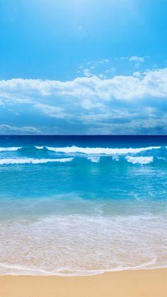 Conchas bajo el mar Polycotton-Azul Cielo