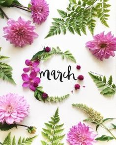 march, flowers, and spring image March Images, Spring Images, March Month, New Month, March Born, October, Seasons Months, Months In A Year, 12 Months