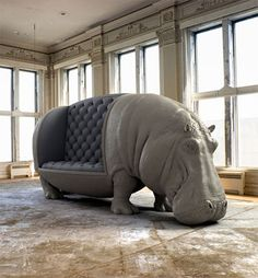 Presidente del hipopótamo