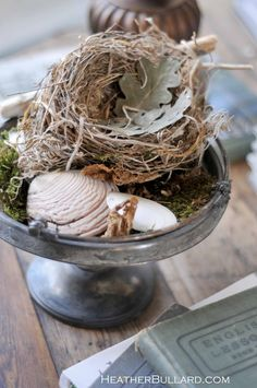 Nature in a dish: Moss, shells, nest, leaves. Interesting!