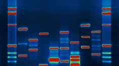 Sweden's national DNA database could be released to private firms - http://www.sogotechnews.com/2016/07/06/swedens-national-dna-database-could-be-released-to-private-firms/?utm_source=Pinterest&utm_medium=autoshare&utm_campaign=SOGO+Tech+News