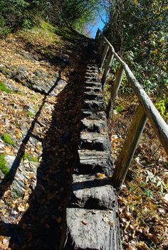 Hiking trail in Great Smoky Mountains Park a great day trip when you stay at #highrockrentals