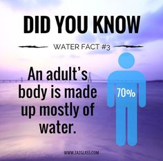 Did You Know..? 💥CLICK LINK IN BIO💥 ##health #fitness #interesting #facts #cool #water @zaz_glass #zazglass