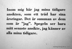 Minnena ser mig - baksidestext - Tomas Tranströmer