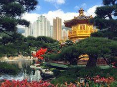 Beautiful!!! #vsco #vscoph #instadaily #instagram #travel #traveler #travelgram #photography #travelgram #vsco #vscoph #vscocamgram #ilovetraveling #hk #hongkong #christmas #christmas2015 #instapic #picoftheday #ilovehk #china #nature #water #sun #boat #sunset #photo #photography #vscocamgram #vscophile #instagood by francisbaraan_iv