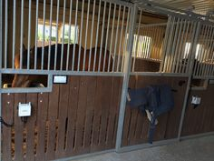 Equine monitoring system in horse stables