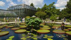 http://cdn.phillymag.com/wp-content/uploads/2016/05/longwood-gardens.jpg
