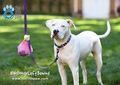 No more holding poo bags during dog walks! Whoop Whoop!