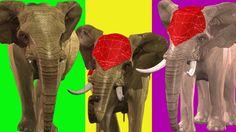 Finger Family || ELEPHANTS Version || Children Animated 3D Rhymes