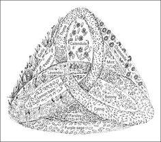 1000 images about herb garden plan on pinterest herb for Herb knot garden designs
