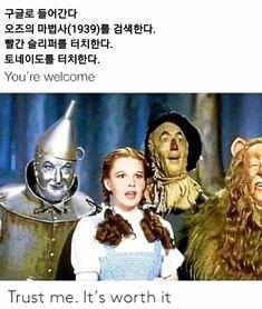 Memes Humor, Funny Memes, Dumb Meme, Hilarious, Wizard Of Oz Memes, Wizard Oz, Funny Weather, Albert Schweitzer, Inspiring Art