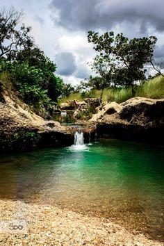 Parque Nacional Aguaro, Guariquito, Edo. Guàrico Venezuela